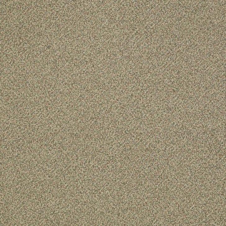 Shaw Philadelphia Snapshot Nest 54719 Commercial Carpet