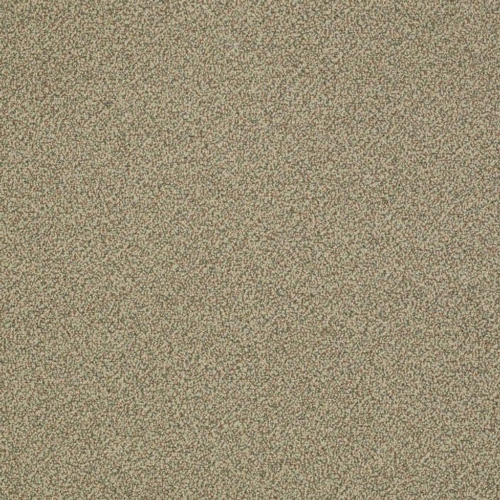Shaw Philadelphia Snapshot Nest 54719 Commercial Carpet