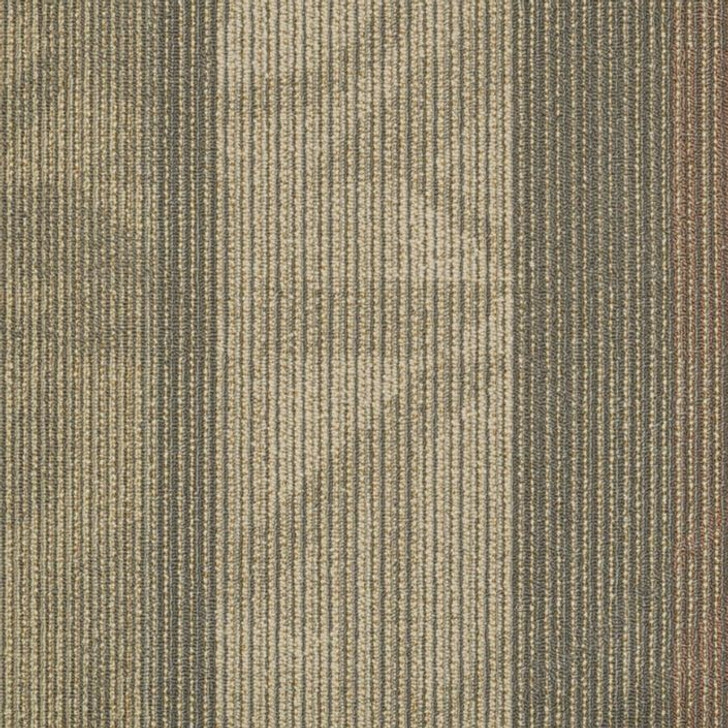 Shaw Philadelphia Interference Feedback 54565 Commercial Carpet