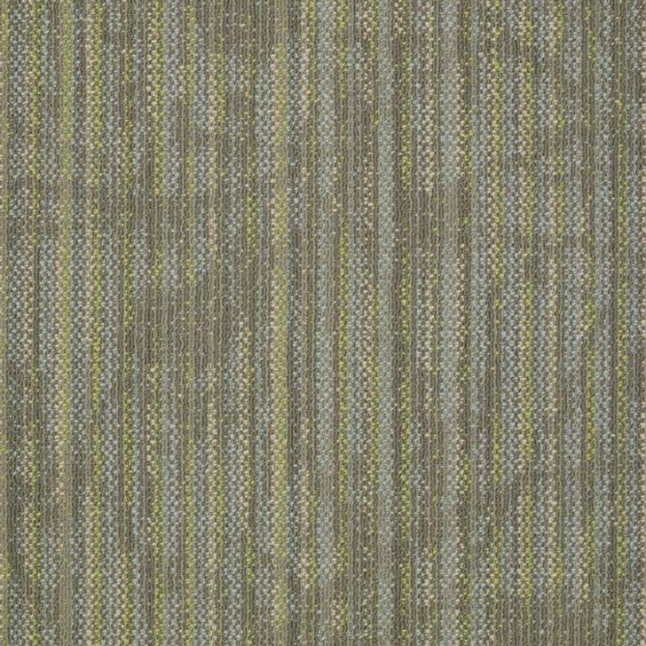 Shaw Philadelphia Embrace Reveal 54758 Commercial Carpet