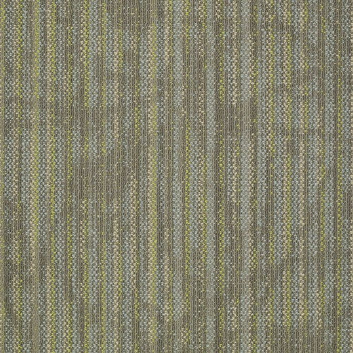 Shaw Philadelphia Embrace Reveal 54758 Commercial Carpet