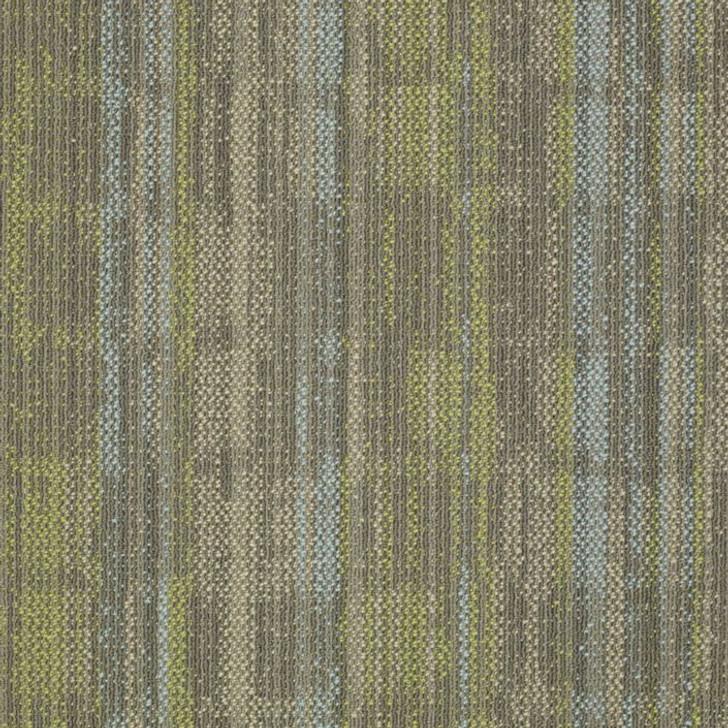 Shaw Philadelphia Embrace Wonder 54756 Commercial Carpet
