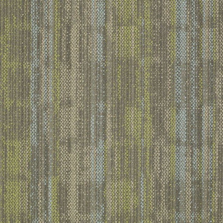 Shaw Philadelphia Embrace Wonder 54756 Commercial Carpet