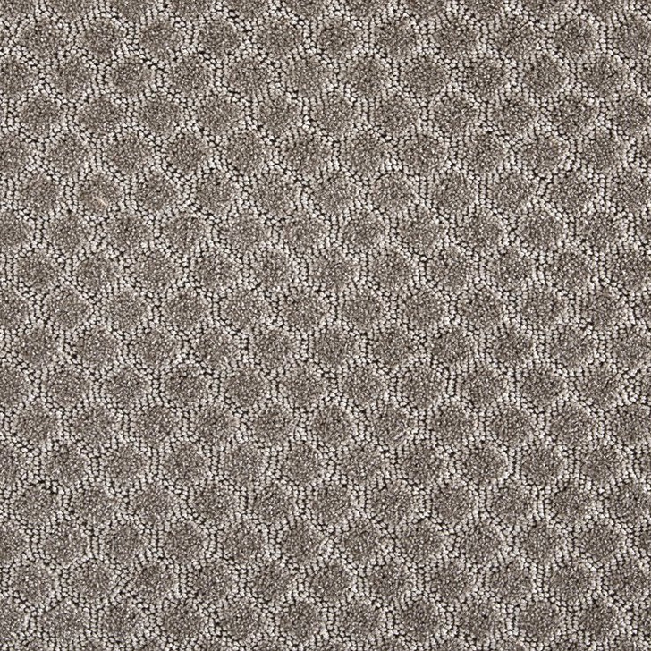 Stanton Fusion Merge Polypropylene Fiber Residential Carpet