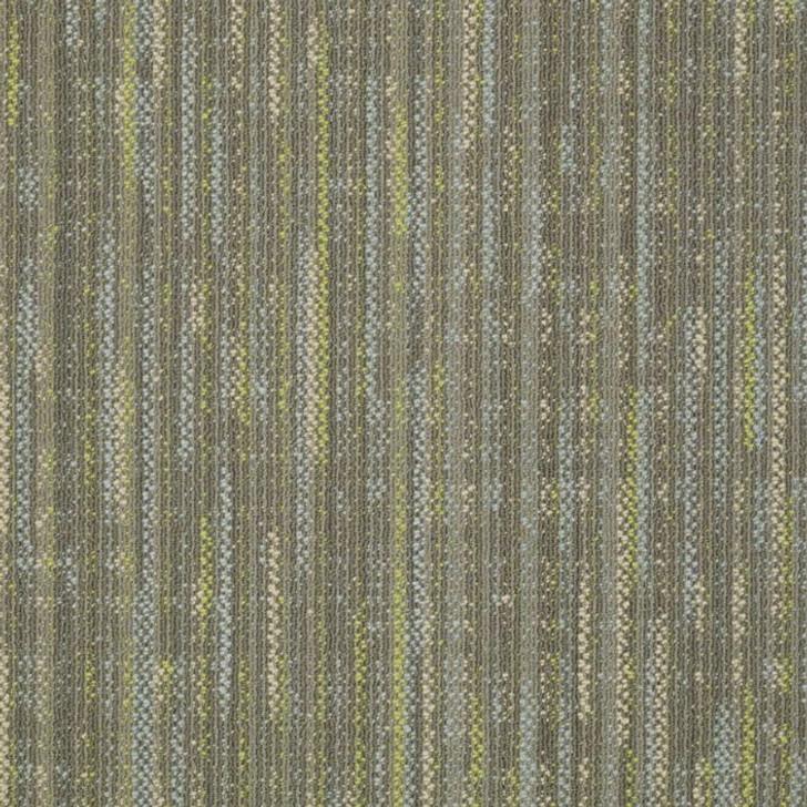 Shaw Philadelphia Embrace Enlighten 54757 Commercial Carpet