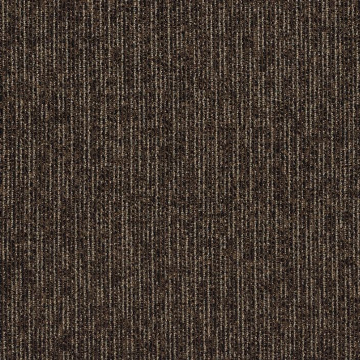 Shaw Philadelphia Walk This Way Step Right In 54860 Commercial Carpet