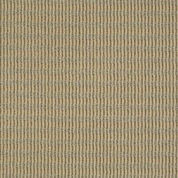 Shaw Philadelphia Spellbound Enchant J0186 Commercial Carpet