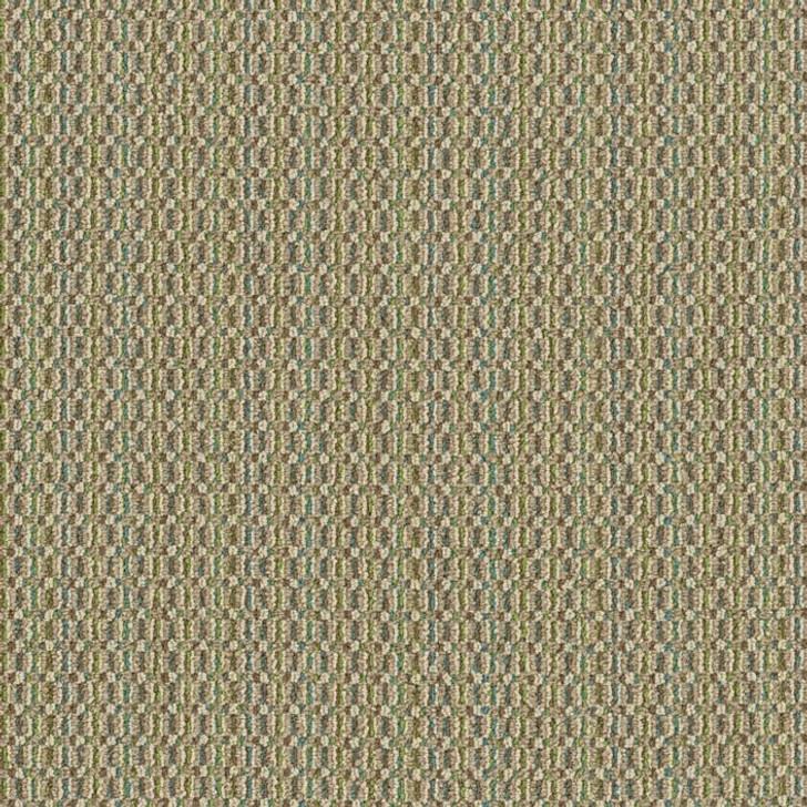 Shaw Philadelphia Pattern Play Color Grid 54812 Commercial Carpet