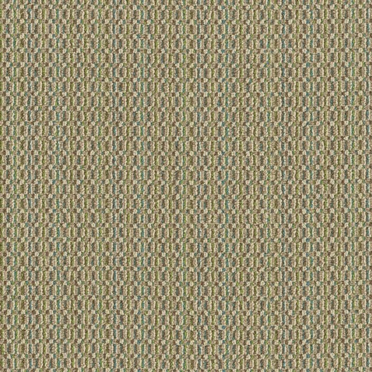 Shaw Philadelphia Pattern Play Color Grid 54812 Commercial Carpet