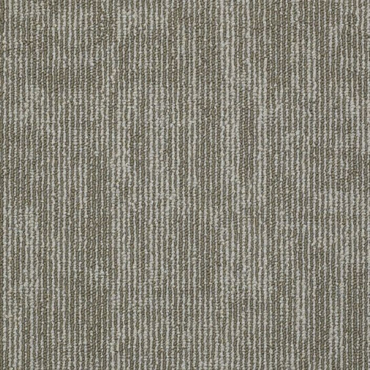 Shaw Philadelphia Duo Carbon Copy 54806 Commercial Carpet