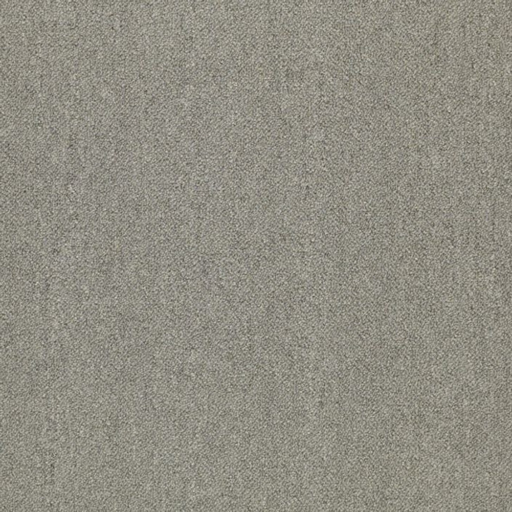 Shaw Philadelphia Duo Counterpart 54816 Commercial Carpet
