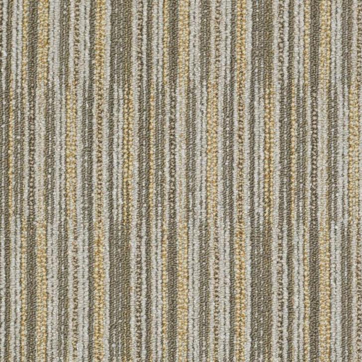 Shaw Philadelphia Cross Section Cutaway J0181 Commercial Carpet