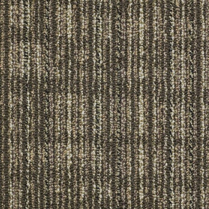 Shaw Philadelphia Common Threads Mesh Weave 54458 Commercial Carpet