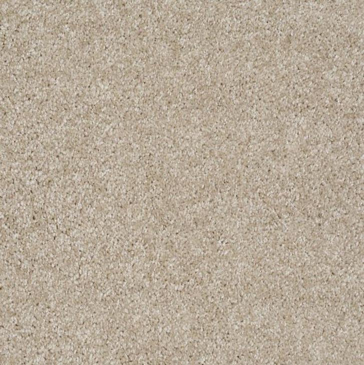 Shaw Philadelphia Exclusive Idle Time 54836 Commercial Carpet