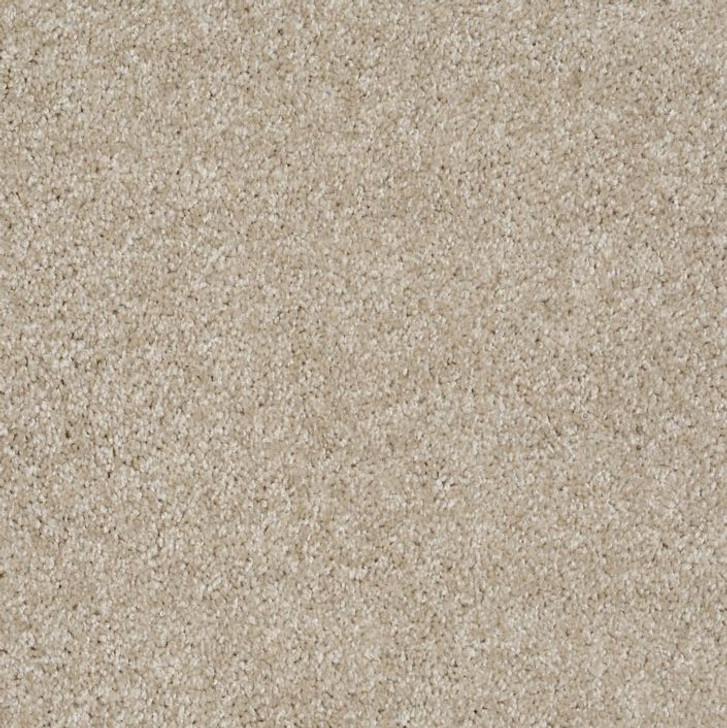 Shaw Philadelphia Exclusive Idle Time 54836 Commercial Carpet