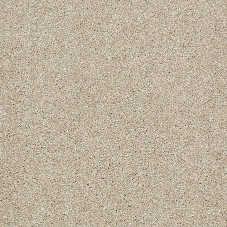 Shaw Philadelphia Exclusive Kicking Back 54838 Commercial Carpet