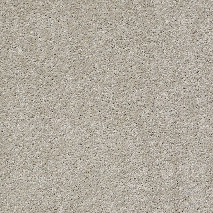 Shaw Philadelphia Exclusive Side Track 54837 Commercial Carpet