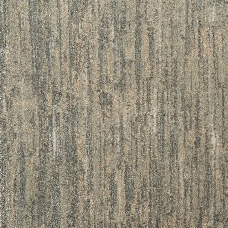 Stanton Illuminations Hydra Polypropylene Fiber Residential Carpet
