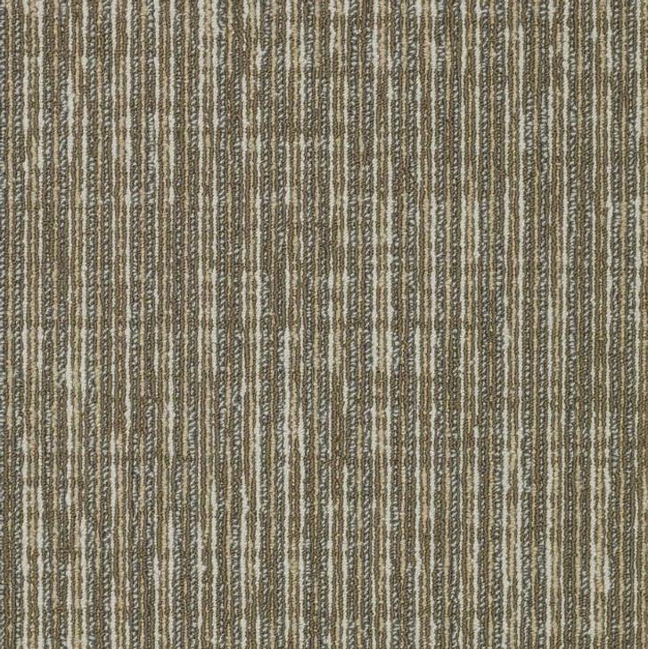 Shaw Philadelphia Simple Mechanics Straight Shift 54810 Commercial Carpet