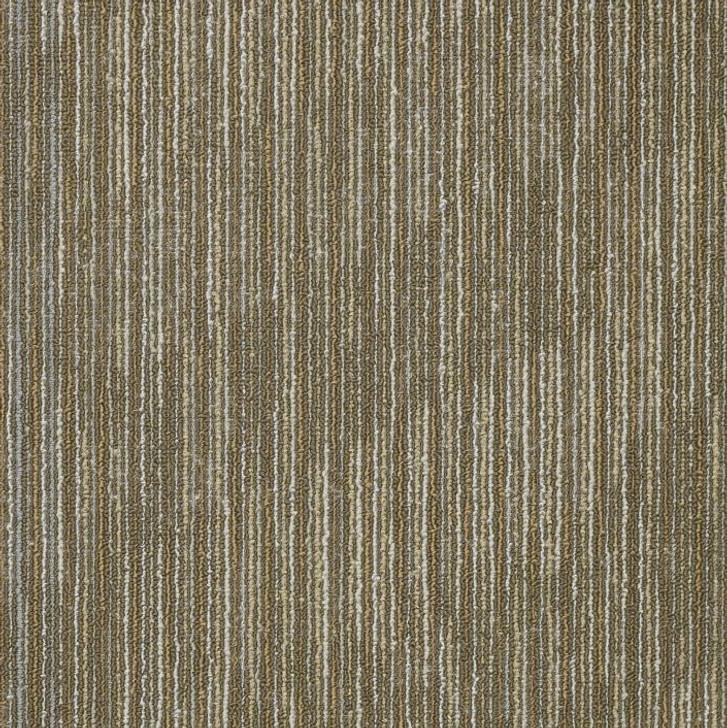 Shaw Philadelphia Simple Mechanics Shifting Gears 54811 Commercial Carpet