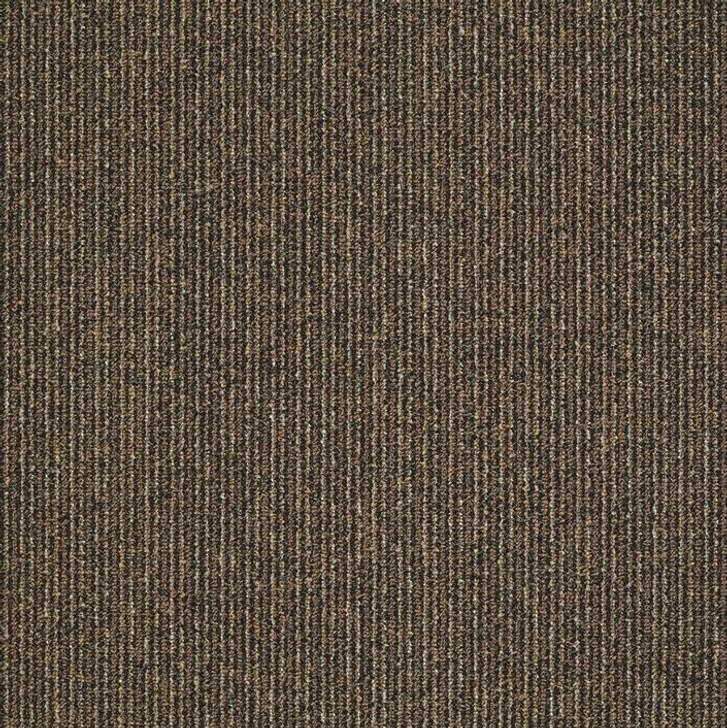 Shaw Philadelphia Step On It 54587 Commercial Carpet