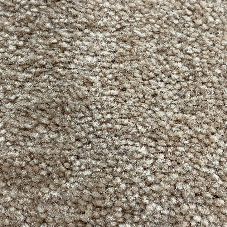 Phenix Acadia 400 Square Feet Residential Carpet Final Sale FREE SHIPPING