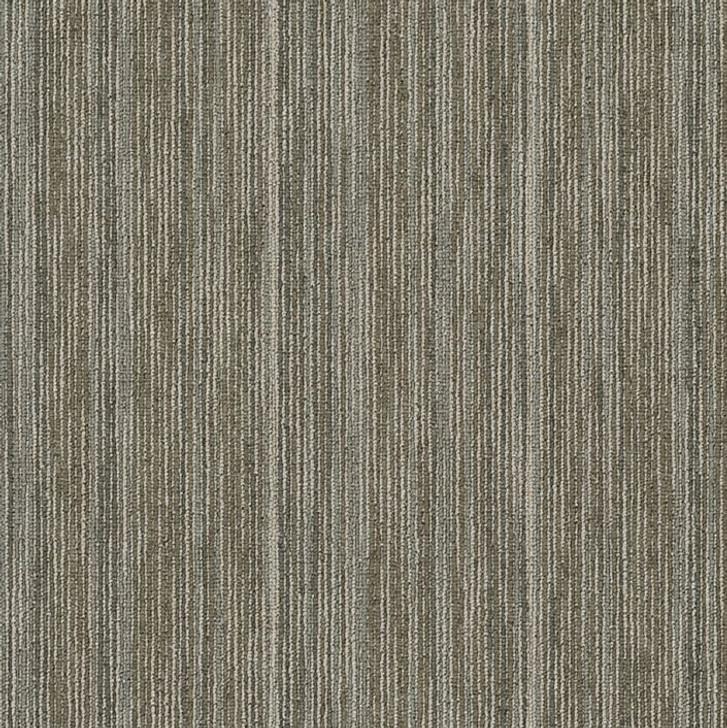 Shaw Philadelphia Praise 54882 Commercial Carpet Tile