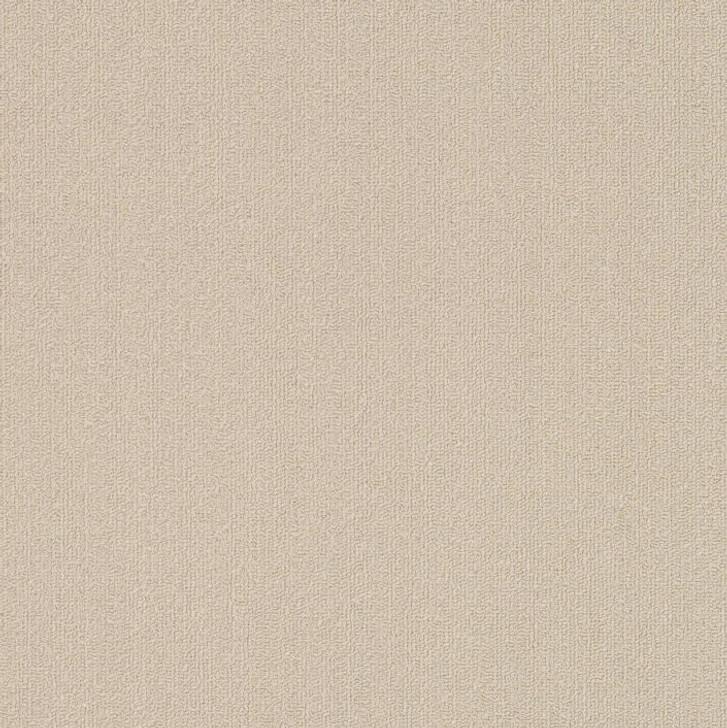 Shaw Philadelphia Color Accents 9x36 54858 Commercial Carpet Tile