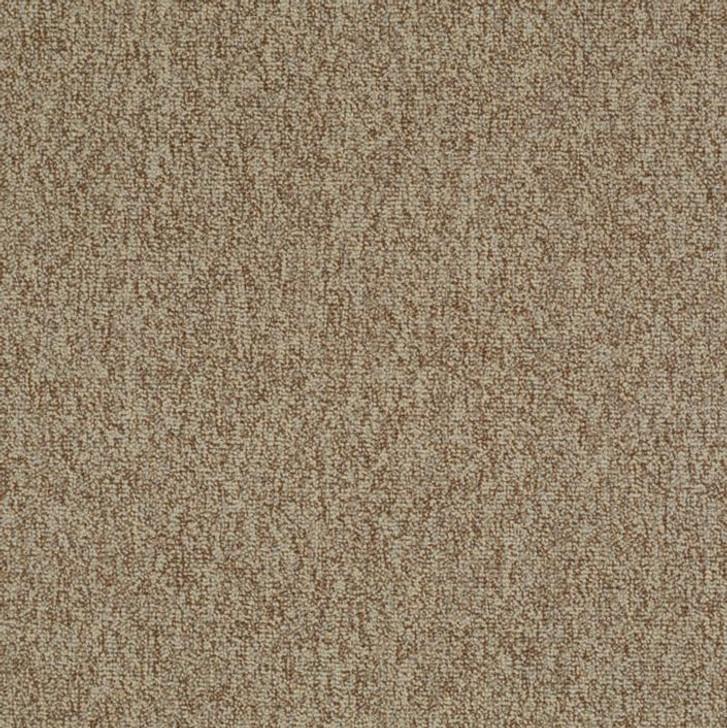 Shaw Philadelphia Multiplicity 24x24 54594 Commercial Carpet Tile