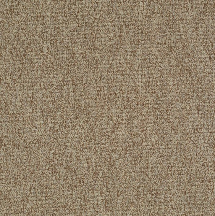 Shaw Philadelphia Multiplicity 24x24 54594 Commercial Carpet Tile