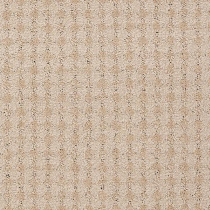 Shaw Philadelphia About Town Metro Life 54411 Colors Commercial Carpet Tile