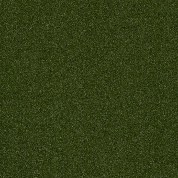 Shaw Philadelphia Adrenaline 5MM 54712 Indoor Outdoor Artificial Turf Carpet