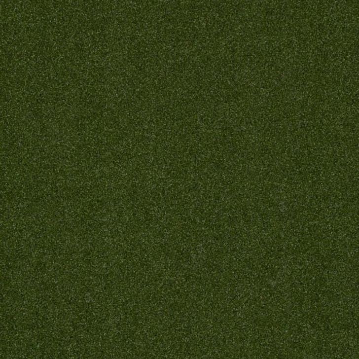 Shaw Philadelphia Performance Turf Adrenaline Unitary 00300 Green 54653 Indoor Outdoor Artificial Turf Carpet