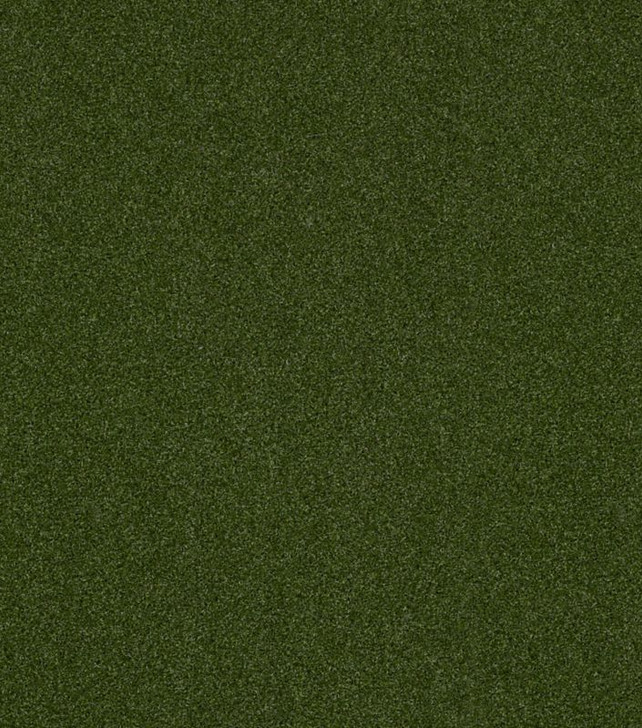 Shaw Philadelphia Performance Turf Agility 5MM 54574 Indoor Outdoor Artificial Turf Carpet