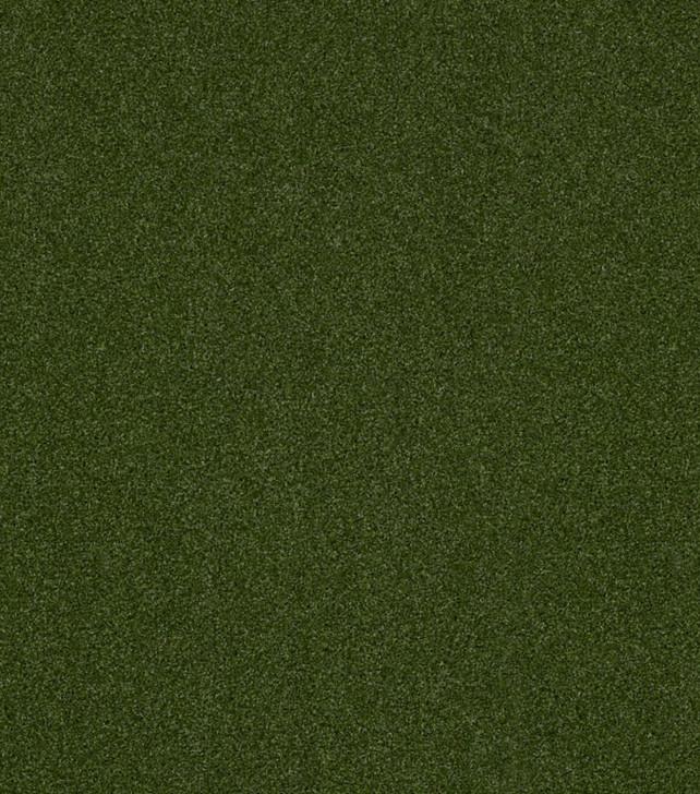 Shaw Philadelphia Performance Turf Agility 5MM 00300 Green 54574 Indoor Outdoor Artificial Turf Carpet