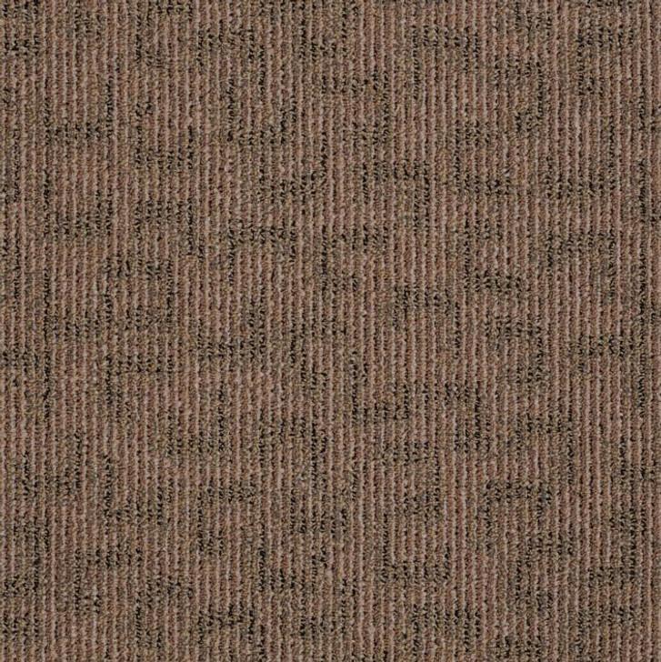 Shaw Philadelphia Sneak Preview J0104 Commercial Carpet Tile
