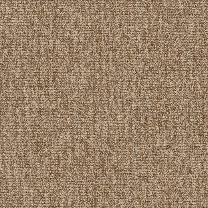 Shaw Philadelphia Multiplicity 18x36 54815 Commercial Carpet Tile