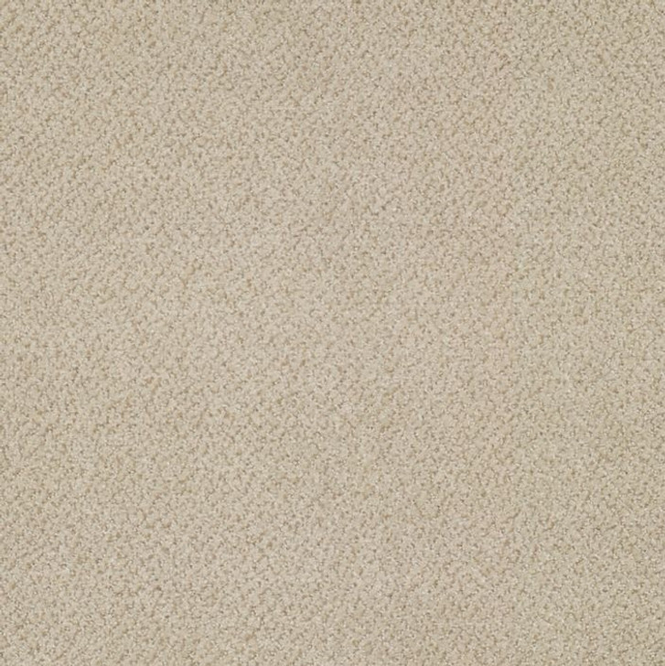 Shaw Philadelphia Prestige J0174 Commercial Carpet