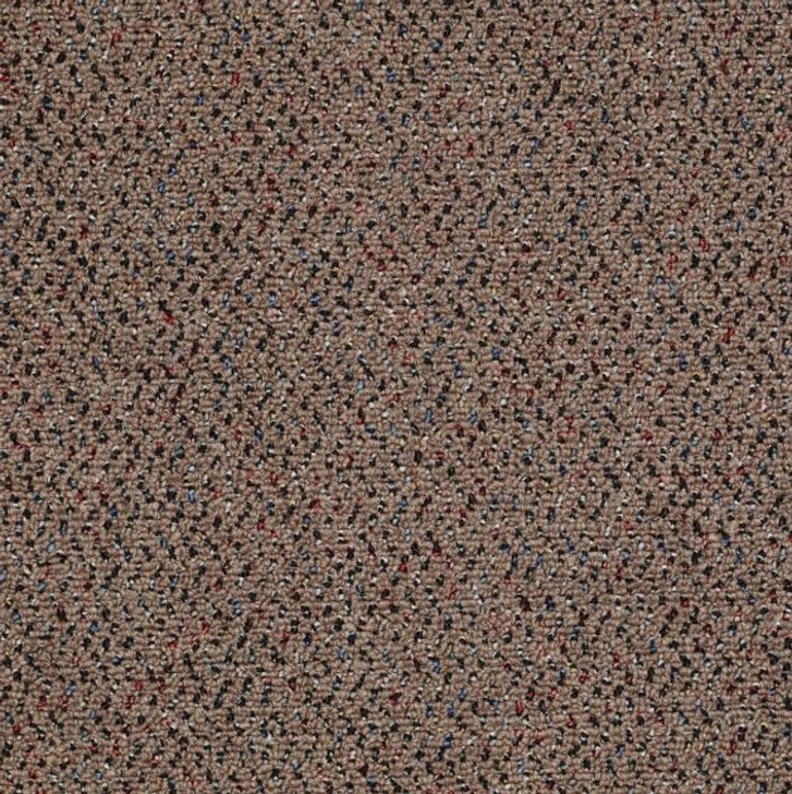 Shaw Philadelphia Big Deal 54599 Commercial Carpet