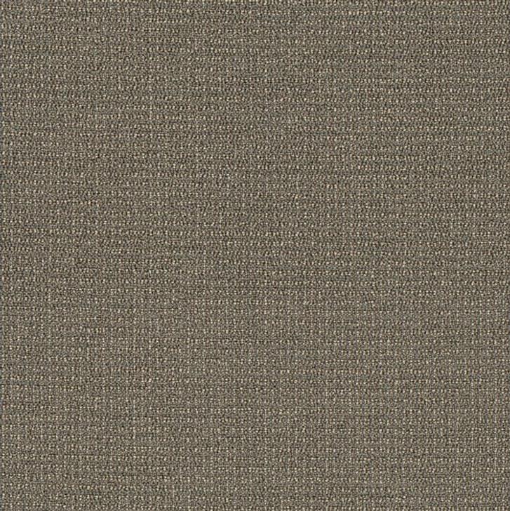 Shaw Philadelphia Dateline Today 54823 Commercial Carpet