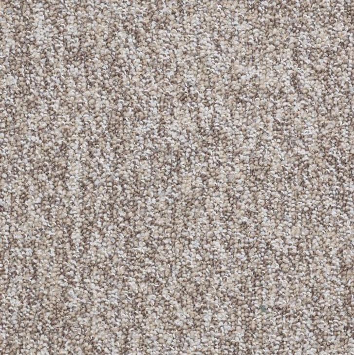 Shaw Philadelphia No Limits 26 J0069 Commercial Carpet
