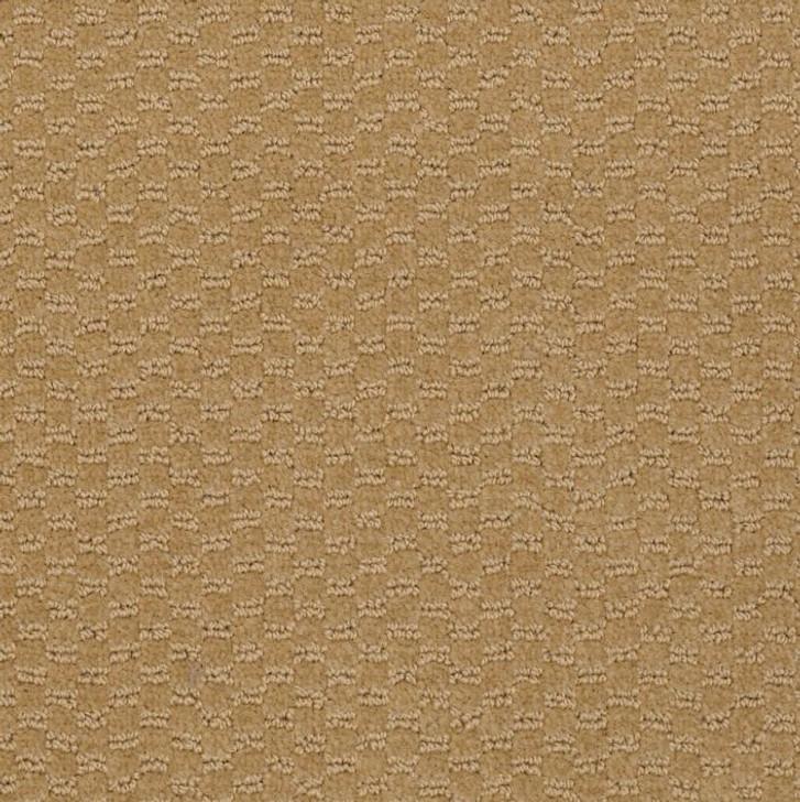 Shaw Philadelphia Latest Trend 54098 Commercial Carpet