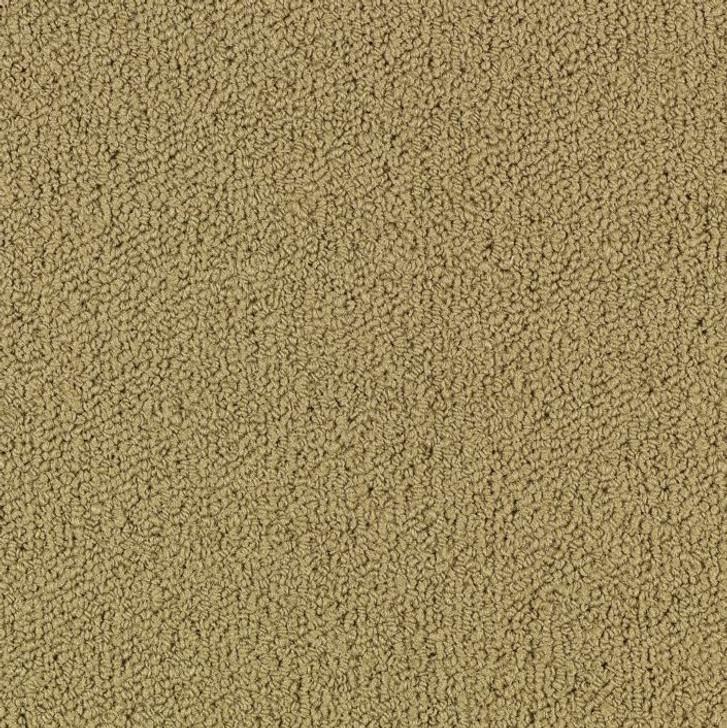 Shaw Philadelphia Color Accents BL 54584Commercial Carpet Tile