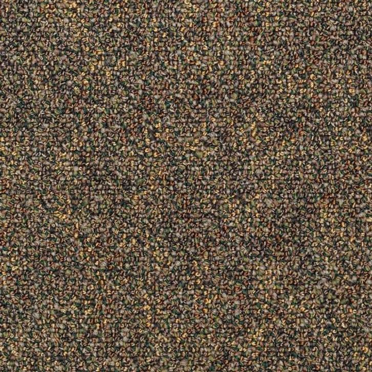 Shaw Philadelphia Hot Circuit 54417 Commercial Carpet