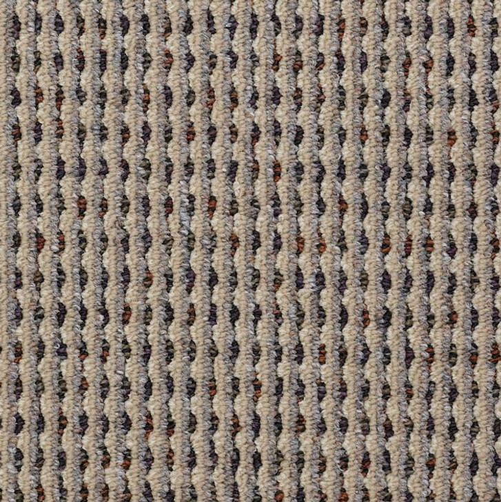 Shaw Philadelphia Functional J0060 Commercial Carpet
