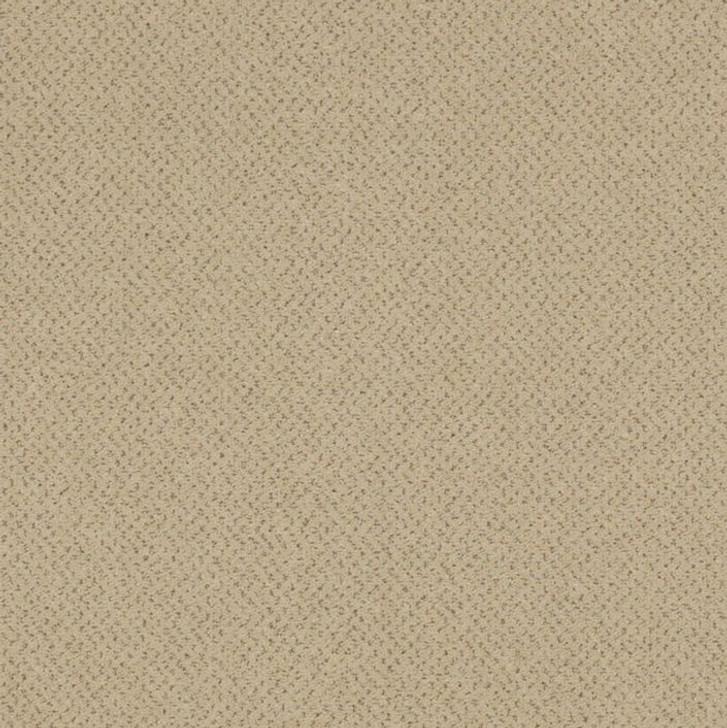 Shaw Philadelphia Future Generations 54644 Commercial Carpet Tile