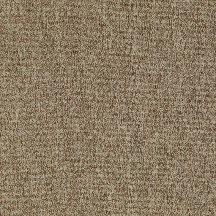 Shaw Philadelphia Multiplicity 54593 Commercial Carpet