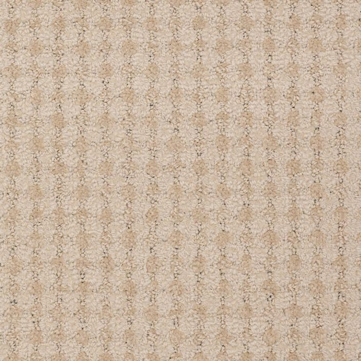 Shaw Philadelphia Live 54735 Commercial Carpet