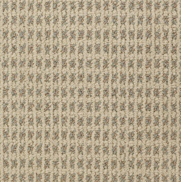 Shaw Philadelphia Modern Traditions 54207 Commercial Carpet