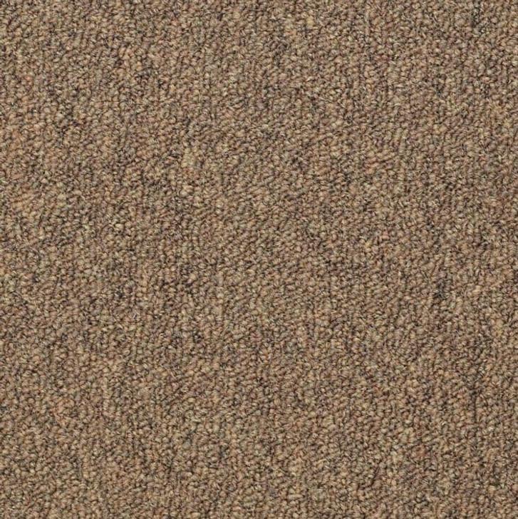 Shaw Philadelphia Capital III Unitary Commercial Carpet